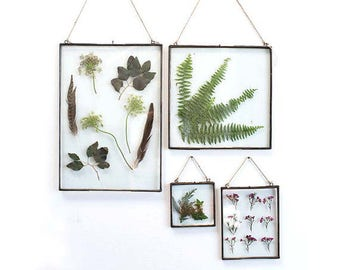Clear glass frame, frame, rustic frame, picture frame, pressed flowers, pressed leaves, zinc frame, zinc house, zinc decor, 8 X 11