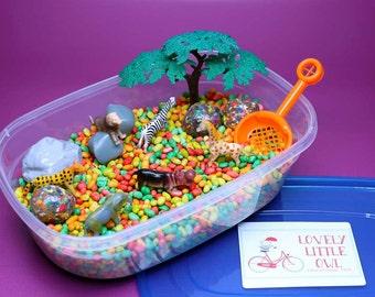 Sensory Bin – Sensory Box – Sensory Toys – Toddler Educational Toys – Montessori Inspired Toys – Educational Toy – ADHD Toy