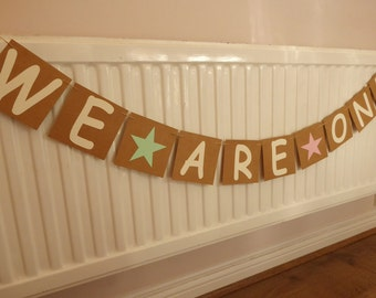 Twins birthday we are one bunting, 1st birthday party decor, mint and pink