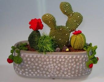 Crochet art of cacti in ceramic pot