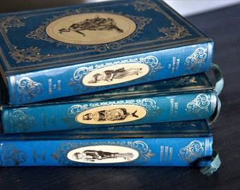 Set of 3 French Literature Books/Turquoise and Gold French Illustrated Story Books/French Decorative Story Books