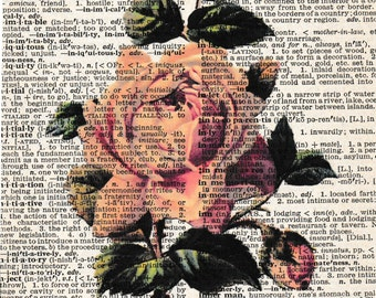 5x7 | Pink Rose | Rose | Rose Picture | Rose Lover | Flowers | Flower Print | Flower Picture | Gifts | flower | Re-purposed Dictionary