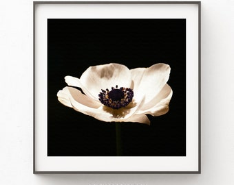 Anemone Sepia Print, Flower Print, Flower poster, Anemone Closeup, Flower Printable Plant, Sepia Photograph,