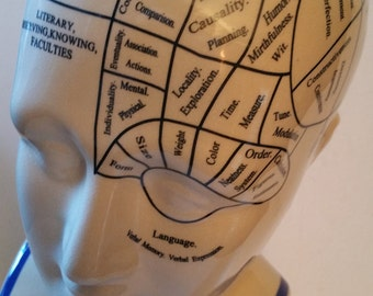 Learn about your brain.....Phrenology head