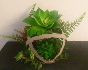 Abstract succulent arrangement