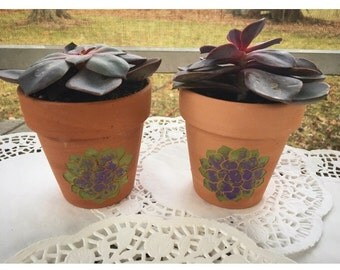 Ceramic Plant Holders - Succulent Pot - Etched and Handpainted (Set of 2) - Custom Planters - Gifts - Gift Ideas - Gifts for her