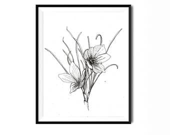 Saffron Crocus Print, Botanical Illustration, Flower Art, Pen Ink Print, Floral Art, Botanical Print, Black White Flower Print, Flora Print