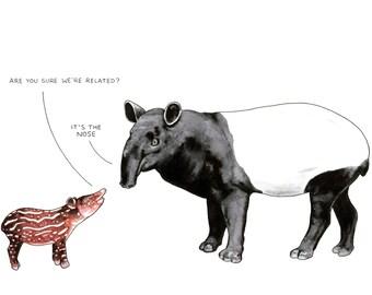 Tapirs, card or mounted print, conversation exploring genealogy, nose joke, genetics, baby tapir, malayan, funny, cute, family, related