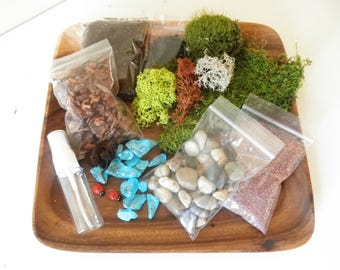 DIY - Colorful Terrarium Kit - Use your own container