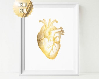 Human Heart Anatomy Art Print - Real Gold Foil Print - Medical Office Decor - Cardiologist Gift - Gift for Doctor - Med School Gifts