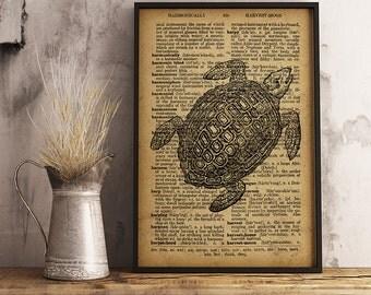 Turtle Print, Vintage style illustration Turtle Dictionary print, Turtle poster home decor, turtle printable art R40