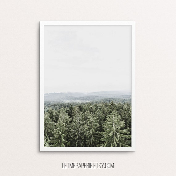 Forest prints, forest landscape, winter print, nature wall art, forest photography, mountain photo, scandinavian print, froggy forest, trees