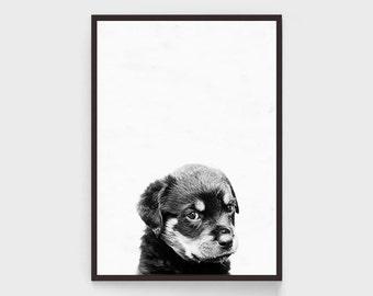 Dog Print Black And White Wall Art, Puppy Print, Nursery Wall Art, Baby Wall Art, Dog Poster, Puppy Poster, Black White Art