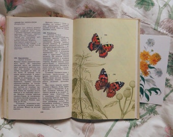 Vintage book with insect illustrations, reference book