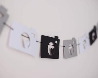 A Year In A Flash Paper Garland - Camera Garland, One Year Old, First Birthday, Party Decor, Customizable