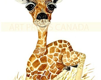 Animal print, Giraffe Art print, African animal, zoo animal art, Gerry the Giraffe