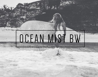 Ocean Mist BW Indie Muse Collection 3 Presets  4 Tool Presets 9 LR Brushes Lightroom Presets for Professional Results by LouMarksPhoto