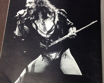 Ian Anderson/Jethro Tull - Poster 1977