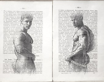 Gay erotic poster  / muscular nude boys  / 2 pages printing Antique Russian book  decor interior picture ART erotic