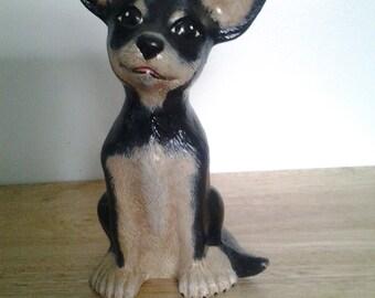 Chihuahua Black & Brown