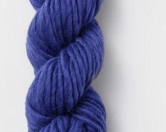 Blue Sky Fibers Bulky yarn in Marine