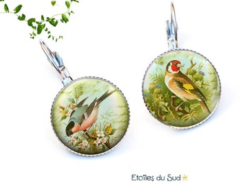 Colorful birds earrings, surgical steel hooks, ref.225