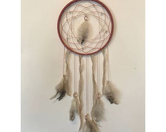 Pinks and Browns Dream Catcher