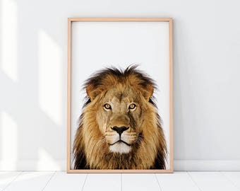 Lion Print, Nursery Decor, Nursery Wall Art, Kids Room Wall Art, Safari Animal, Safari Animal Print, Jungle Animal Print, Lion Photo Poster