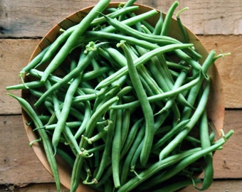 Fresh Green Beans in a Bowl Photograph Print