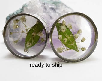 26 mm dried flowers + sheet single flared plug / dried flowers gauges