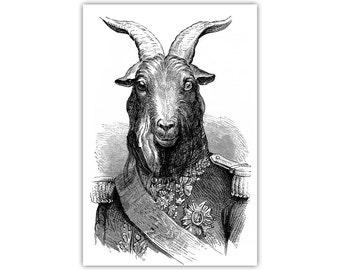 General Goat, Animal Art, Canvas Print, Vintage Illustration, Black and White, Monochrome, Large Poster