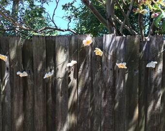 Ten Solar Powered Daffodil Tea Lights