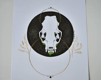 Mink Skull 8 x 10 Print