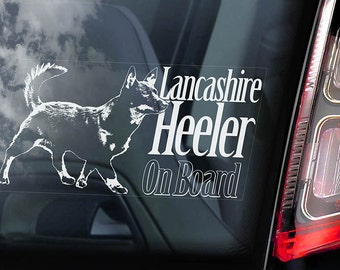 Lancashire Heeler on Board - Car Window Sticker - Ormskirk Terrier Dog Sign Decal Art Gift - V01