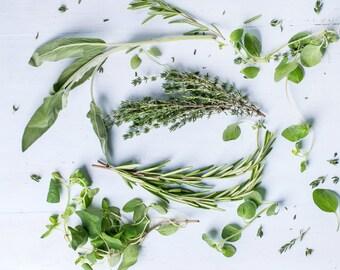 The Italian Herb Seed Kit
