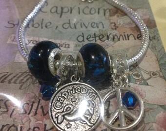 Capricorn zodiac charm bracelet