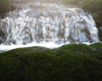 Moss Forest Waterfall Digital Background