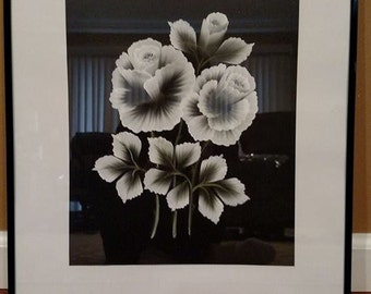 Black and White Framed Acrylic Flower Painting
