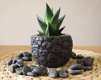Black Ash Pineapple Planter