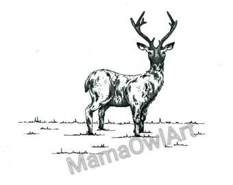 Pencil And Ink Sketch Deer Illustration Print