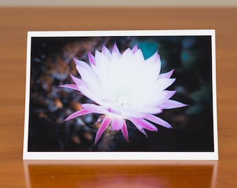 White and purple flower photo greeting card