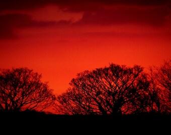 Red Sky A4 Colour Print