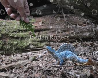 Color Photography, Feeding Dinosaurs