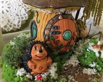 Fairy Garden for coffee table or bookshelf