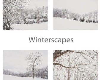 Winterscapes Framable Note Cards