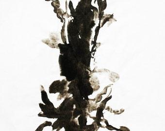 I print landscape I tree