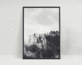 Cloudy Forest Black and White Photographic Wall Art Print