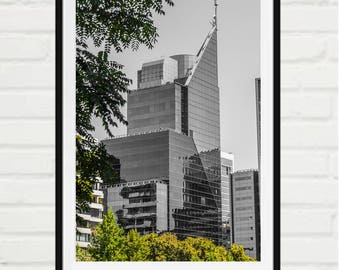 Urban glass building and trees - signed print