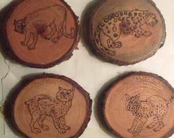 "4"" Cedar Wood Safari Coasters Set of 4"