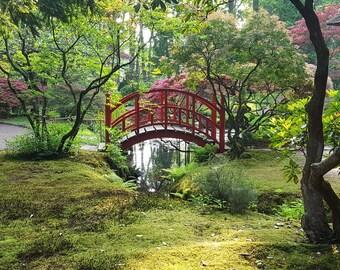 Soribashi - Zen Garden